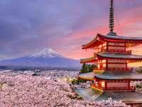 Gyönyörű japán