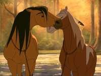 Horses in love❤️❤️❤️