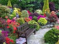 flower garden with a bench