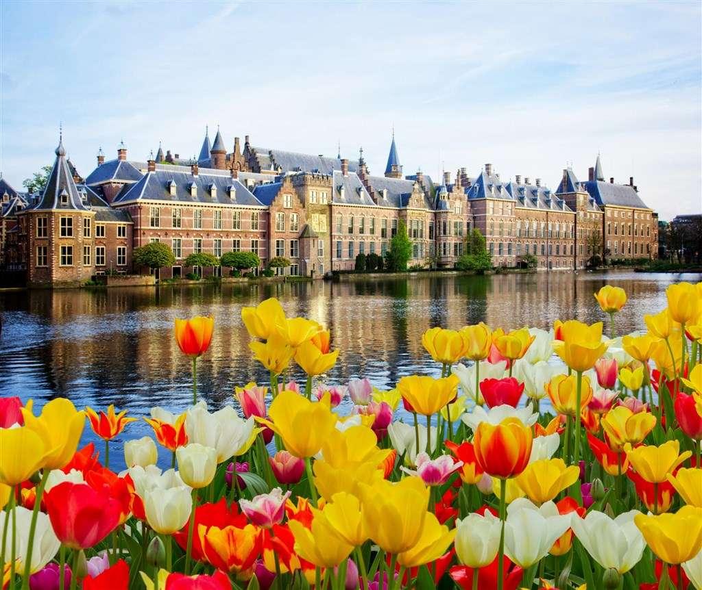 Холандия известен с лалетата