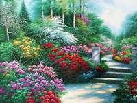 Büsche von Blumen auf dem Weg