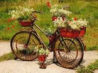 Kolo dekorace na květiny