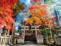 A beautiful image of Japan