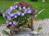 Dřevěný kolečko s květinami