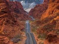 << Nevada >>