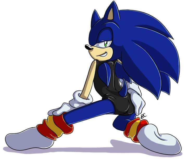 Rufen Sie mich an, Sonic the Igel Online-Puzzle