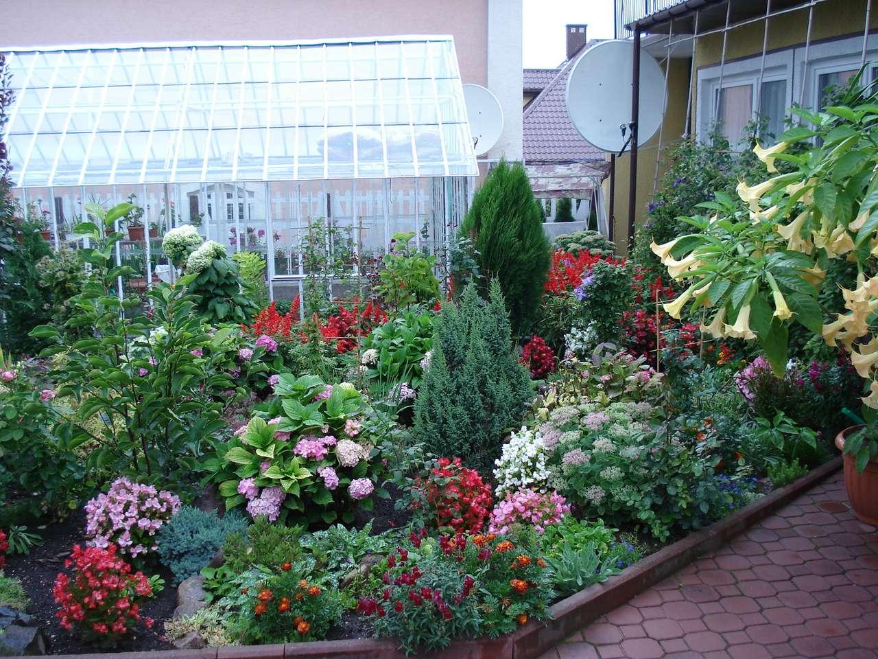 Květiny v zahradě. puzzle