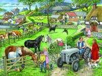 Gospodarstwo domowe na wsi
