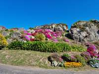 Macizo Floral en Bretaña