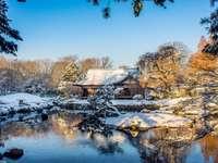 Casa Japonesa Rió y Nieve