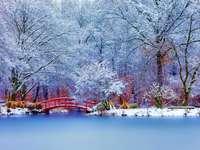 Paisaje nevado y puente