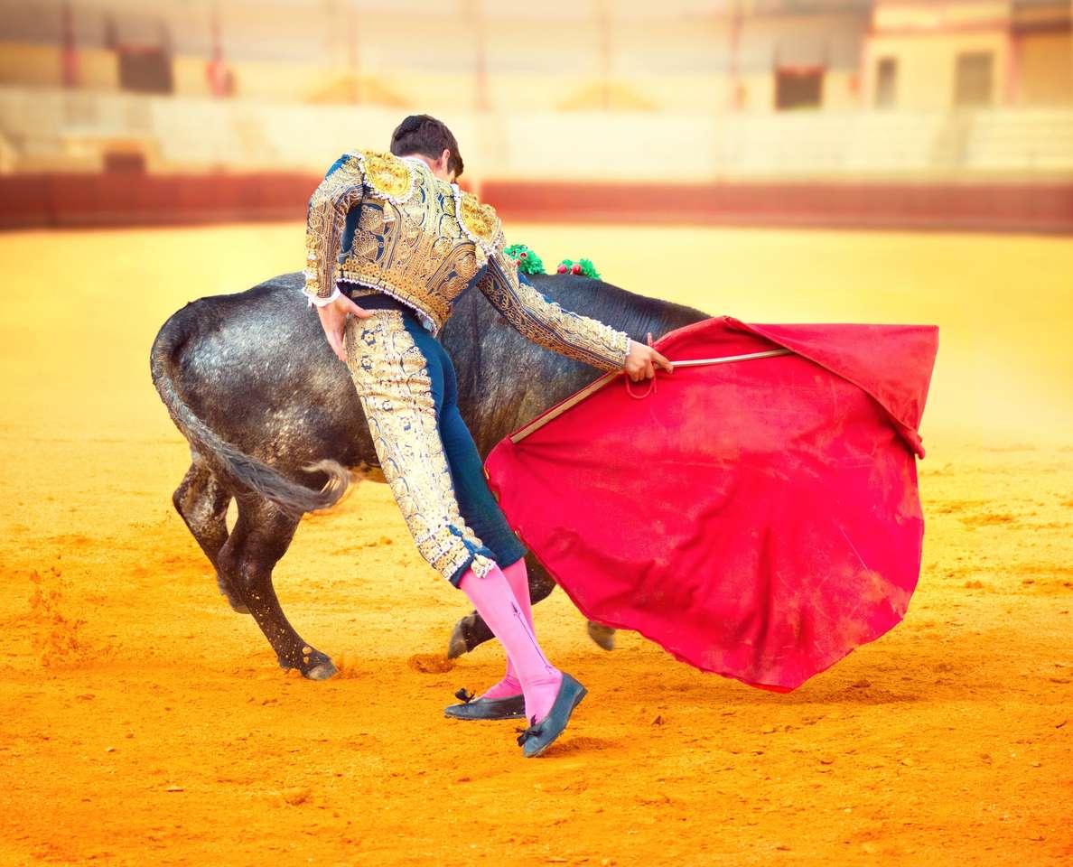 Corrida Matador combattendo in una tipica corrida spagnola