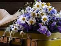 Ramo de flores de campo