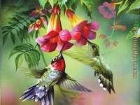 Koliber. puzzle online