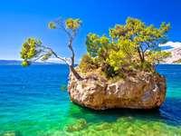 Ιδανική νησίδα στην παραλία Punta Rata στην Brela, Makarska Riviera της Δαλματίας, Κροατία