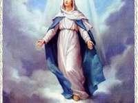 A Szűz Mária feltételezése