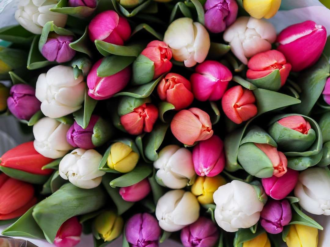 Rózsaszín és fehér rózsa kirakós