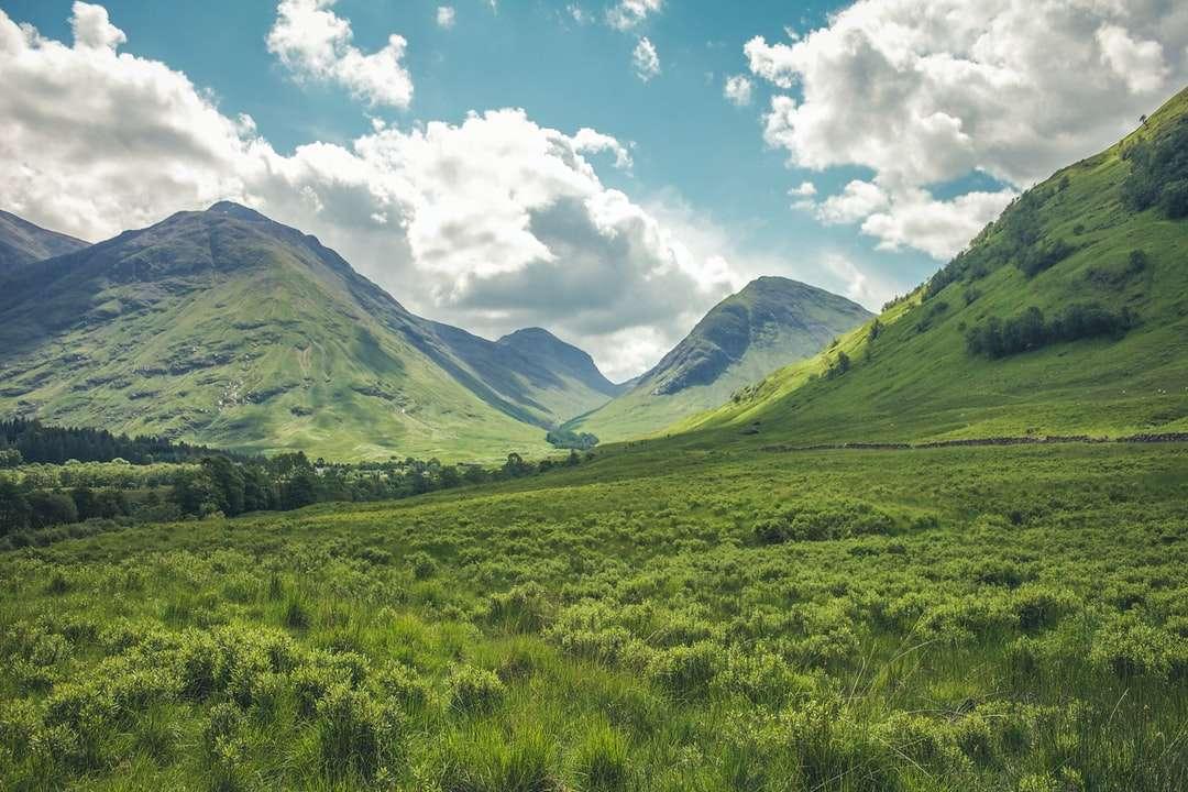 Montanha coberta com grama verde quebra-cabeça