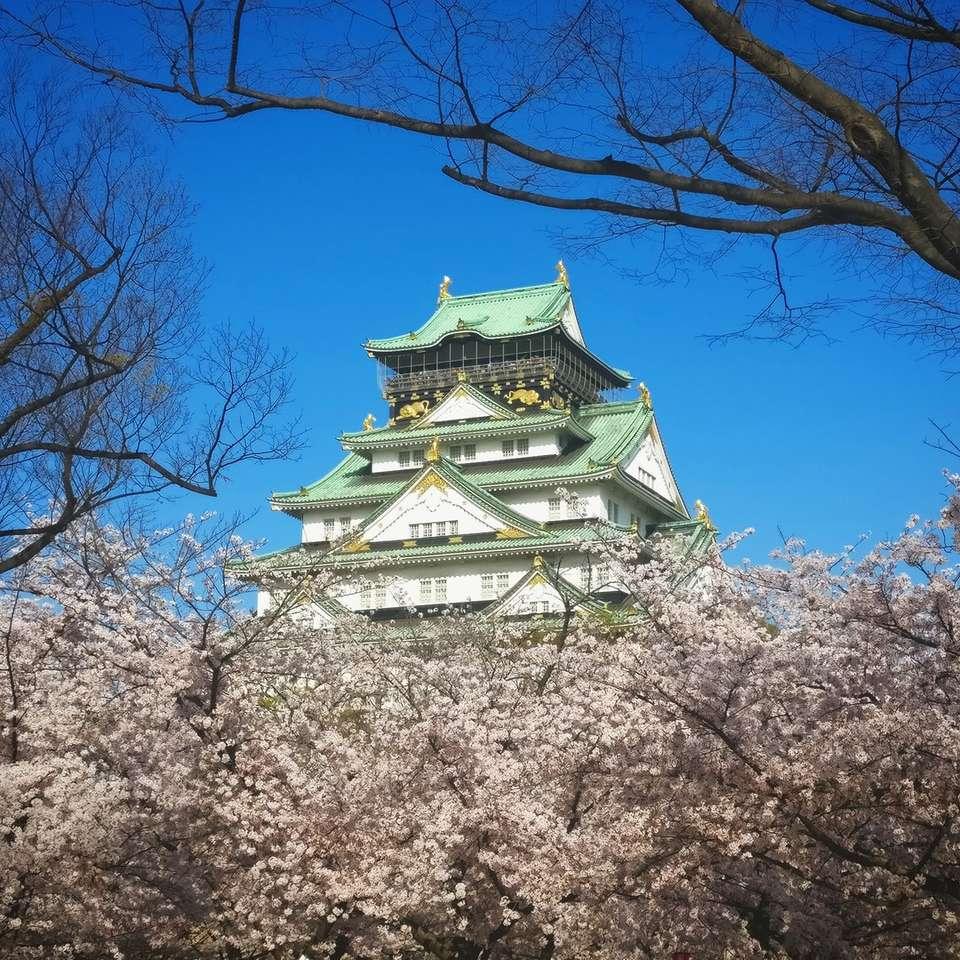 fehér és zöld templom a kék ég alatt nappal