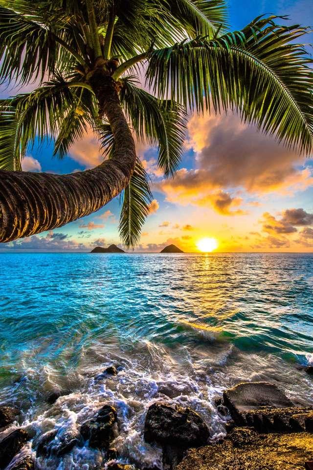 Sunrise sea jigsaw puzzle