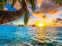 Sunrise sea