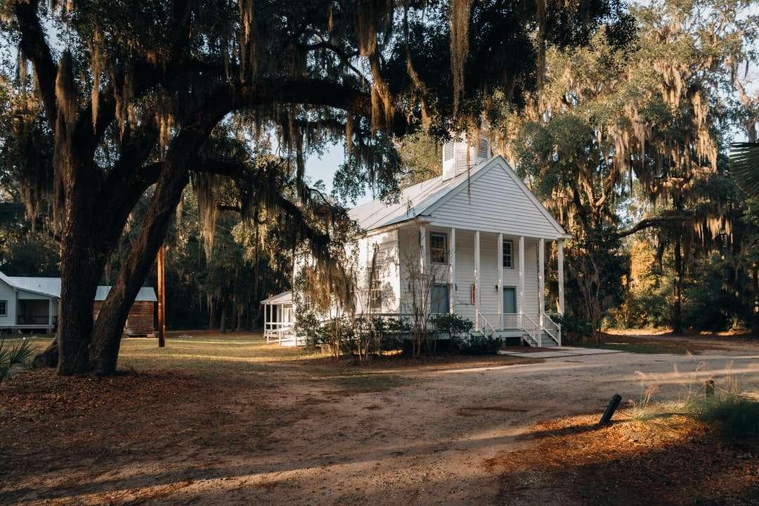 wit houten huis in de buurt van bomen overdag online puzzel