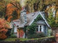 Autumn cottage