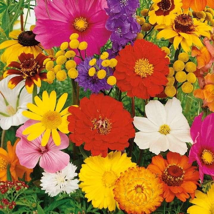 Sommerblumen Online-Puzzle