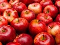 Mnóstwo jabłek