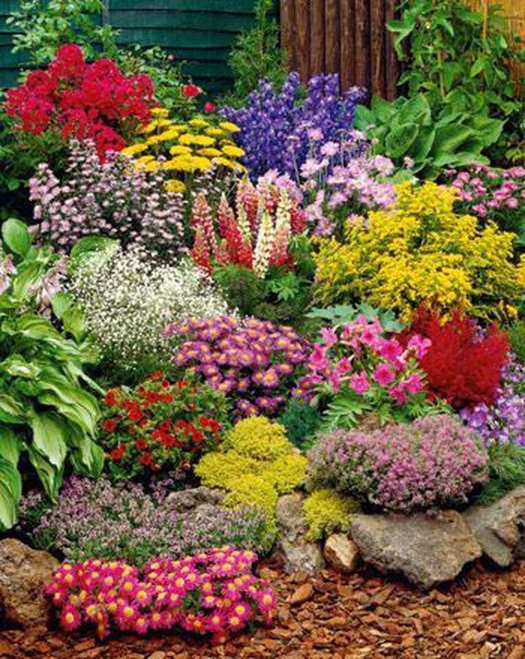 ogród z kwiatami puzzle