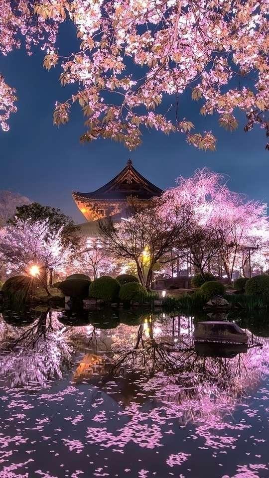 Ιαπωνικός κήπος το σούρουπο