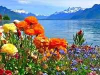 Blumen und Wasser Online-Puzzle