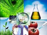 Biotechnology jigsaw puzzle
